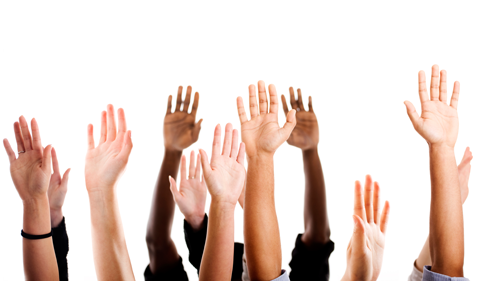 Raise your hand and get rewarded for your valued opinions!
